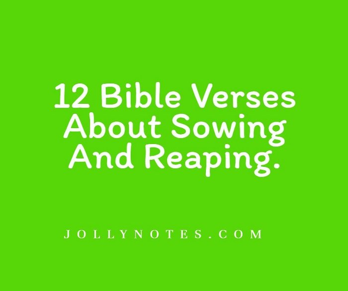 12 Bible Verses About Sowing And Reaping.