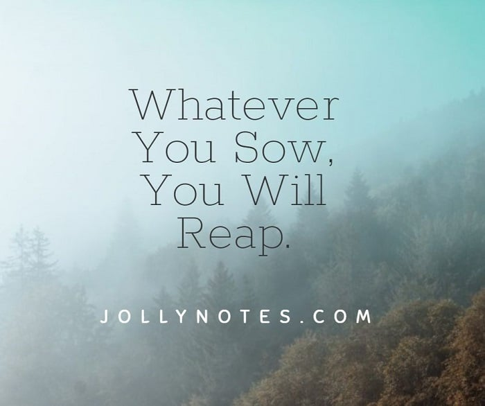 Whatever You Sow, You Will Reap.